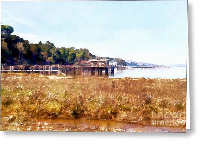 Docked Boats Digital Greeting Cards - Tomales Bay At Inverness Point Reyes California DSC2068wc Greeting Card by Wingsdomain Art and Photography