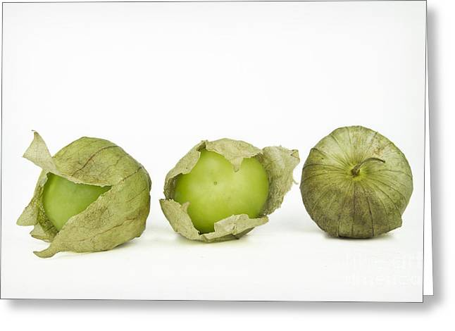Fresh Green Greeting Cards - Tomatillos Greeting Card by Elena Nosyreva