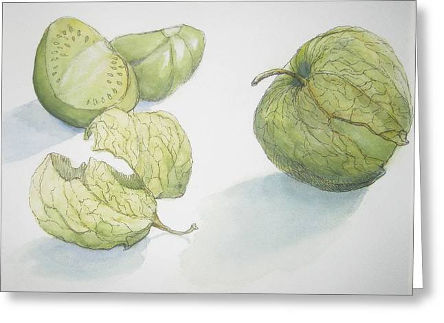 Pen And Ink Drawing Greeting Cards - Tomatillos Greeting Card by Maria Hunt
