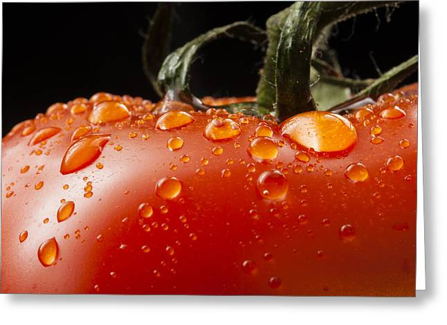 Harvest Bounty Greeting Cards - Tomato fresh food natural wet clean Greeting Card by Andy Gimino