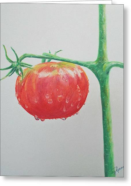 Tomato Drawings Greeting Cards - Tomato Greeting Card by Terry Ganey
