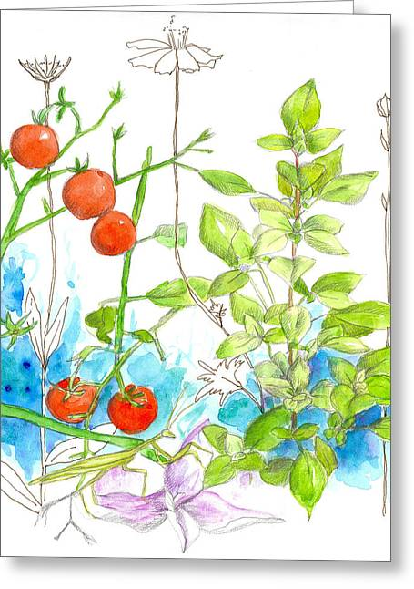 Sketchbook Greeting Cards - Tomatoes and Basil Greeting Card by Cathie Richardson