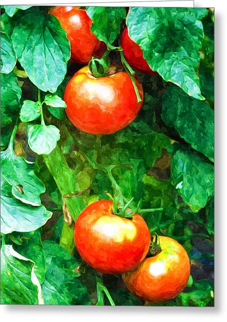 Organic Greeting Cards - Tomatoes close-up Greeting Card by Lanjee Chee