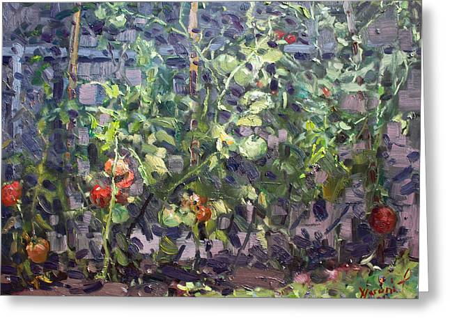 Backyard Greeting Cards - Tomatoes in Violas Garden  Greeting Card by Ylli Haruni