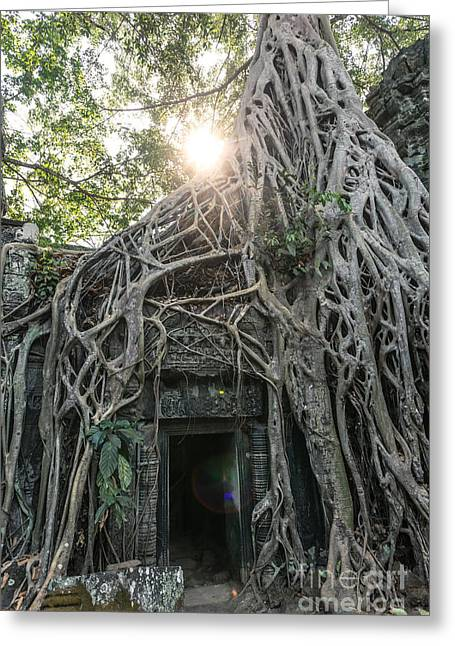 Tree Roots Greeting Cards - Tomb raider temple - Angkor wat - Cambodia Greeting Card by Matteo Colombo