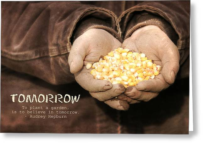 Corn Seeds Greeting Cards - Tomorrow Greeting Card by Lori Deiter