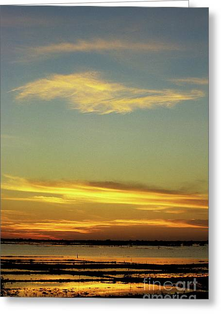 Tonle Greeting Cards - Tonle Sap Sunrise 03 Greeting Card by Rick Piper Photography