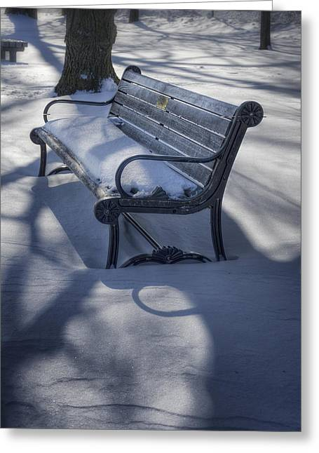 Peaceful Scene Greeting Cards - Too Cold to Contemplate Greeting Card by Joan Carroll