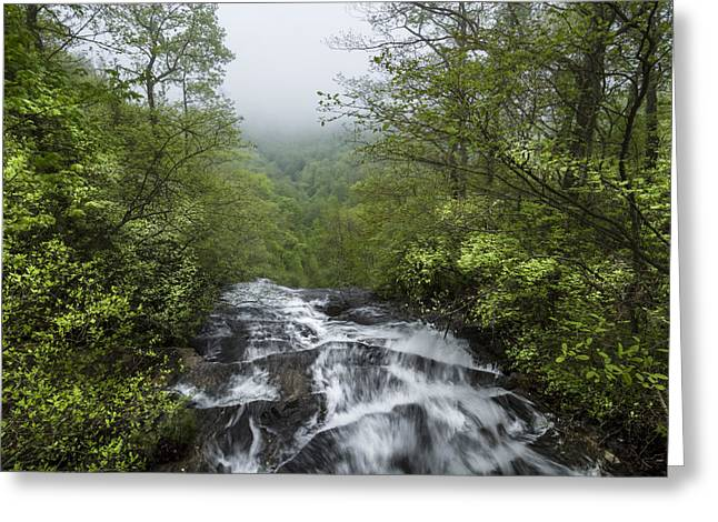 Tennessee Landmark Greeting Cards - Top of Amicalola Falls Greeting Card by Debra and Dave Vanderlaan