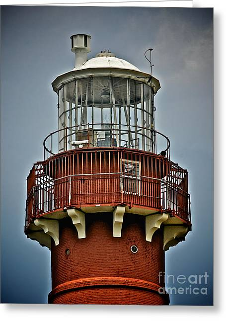 Lbi Greeting Cards - Top of Barney 2012 Greeting Card by Mark Miller