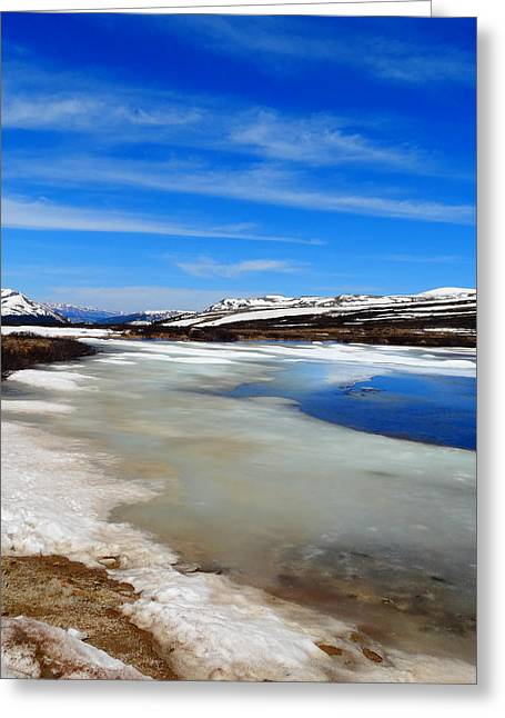 Mountain Climbing Greeting Cards - Top Of Independence Pass Greeting Card by Dan Sproul
