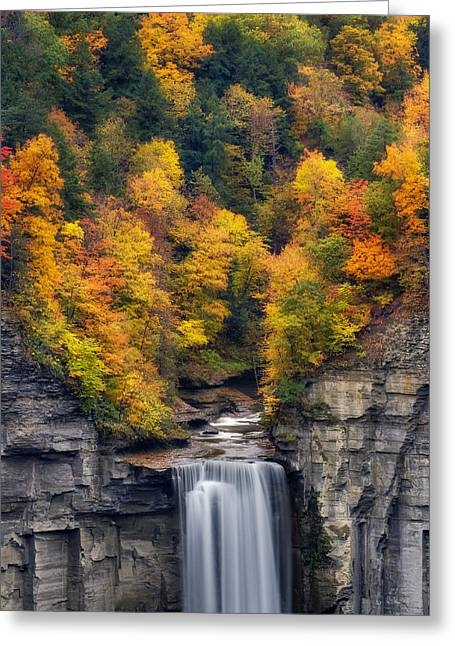 Taughannock Falls State Park Greeting Cards - Top of the falls Greeting Card by Mark Papke