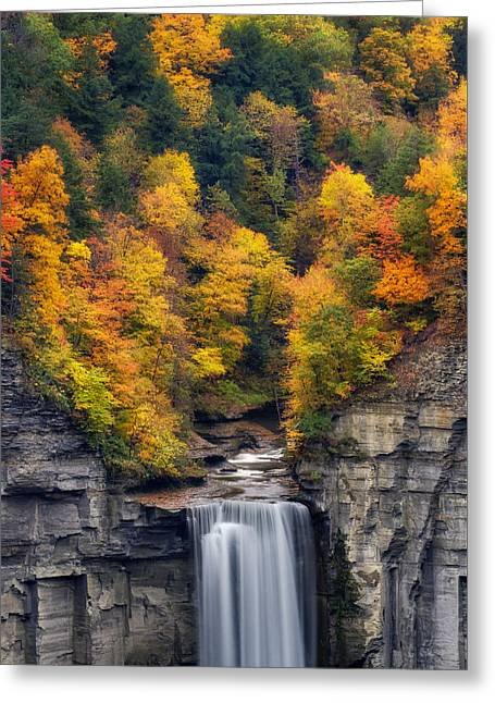 Rivers In The Fall Greeting Cards - Top of the falls Greeting Card by Mark Papke