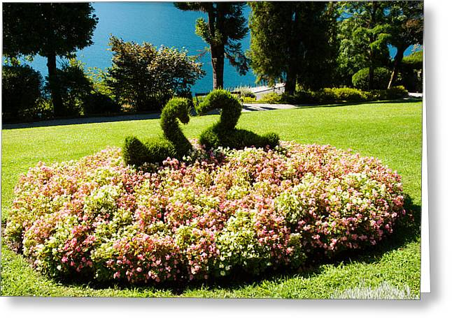 Garden Scene Photographs Greeting Cards - Topiary And Flower Bed In A Garden Greeting Card by Panoramic Images