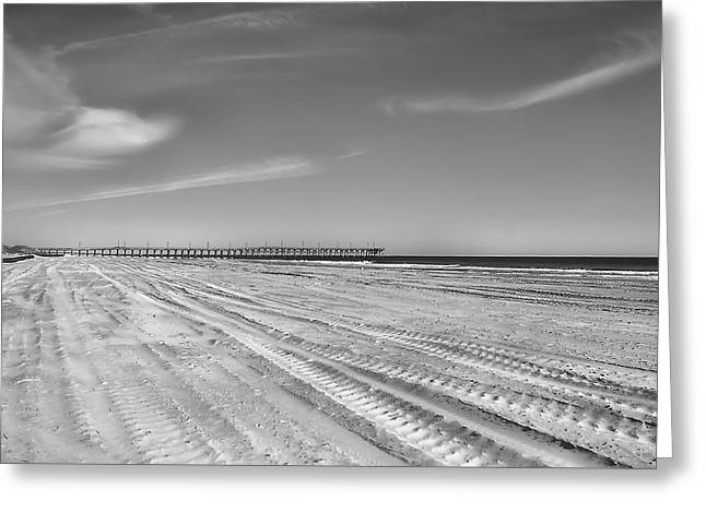 Infared Photography Greeting Cards - Topsail Island  Greeting Card by April Ann Canada Photography
