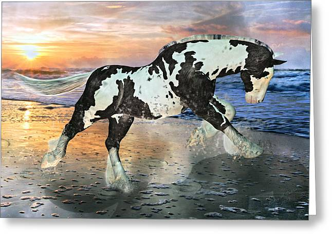 Nc State Greeting Cards - Topsail Phantom  Greeting Card by Betsy C  Knapp