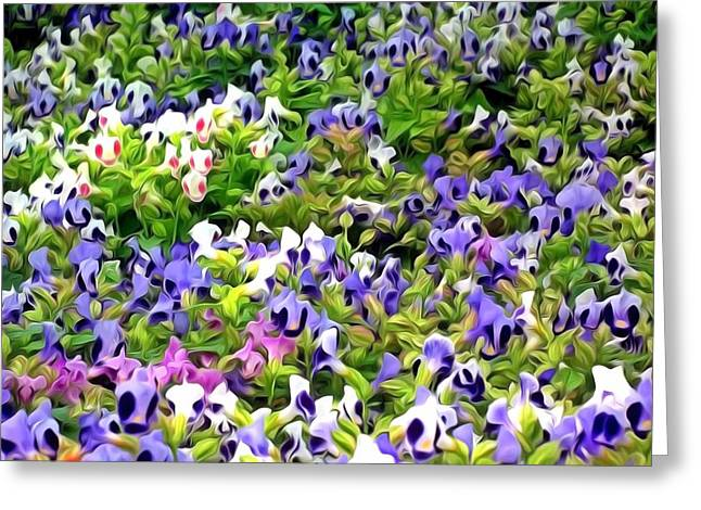 Torenia Flower Greeting Card by Lanjee Chee