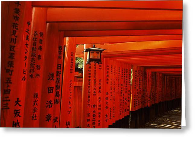 Shinto Greeting Cards - Torii Gates Of A Shrine, Fushimi Greeting Card by Panoramic Images