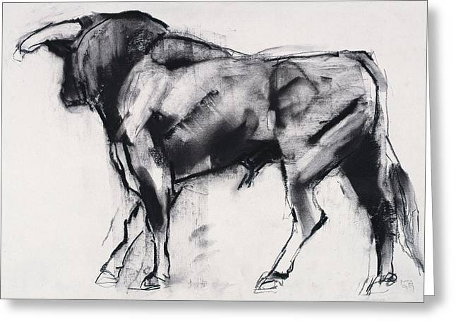 Cattle Pastels Greeting Cards - Toro Azul   Study Greeting Card by Mark Adlington