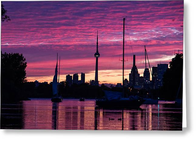 Blue Sailboats Greeting Cards - Toronto Skyline - the Boats Are Coming In Greeting Card by Georgia Mizuleva