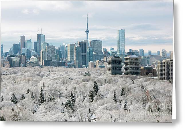 Frost Tower Greeting Cards - Toronto Winter Greeting Card by Charline Xia