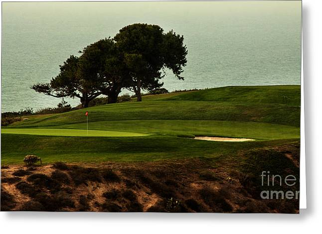 Golfcourse Greeting Cards - Torrey Pines Golfcourse Greeting Card by Darleen Stry