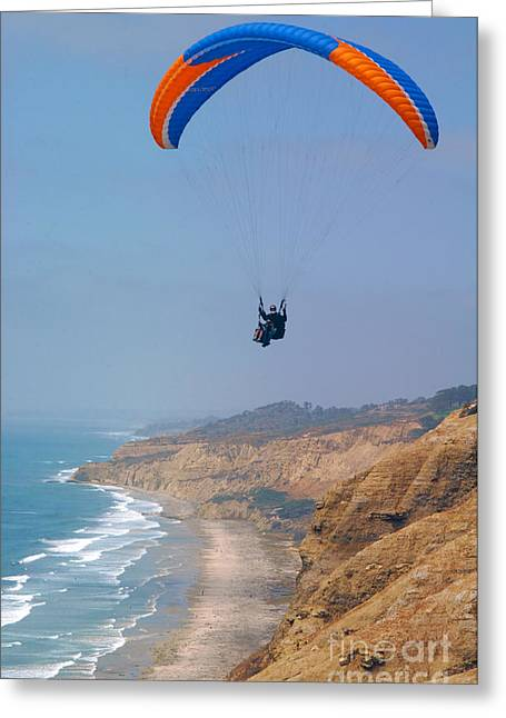 Park Scene Greeting Cards - Torrey Pines Paragliders Greeting Card by Anna Lisa Yoder