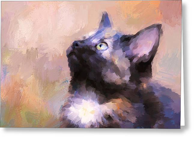 Tortoiseshell Kitten #3 Greeting Card by Jai Johnson