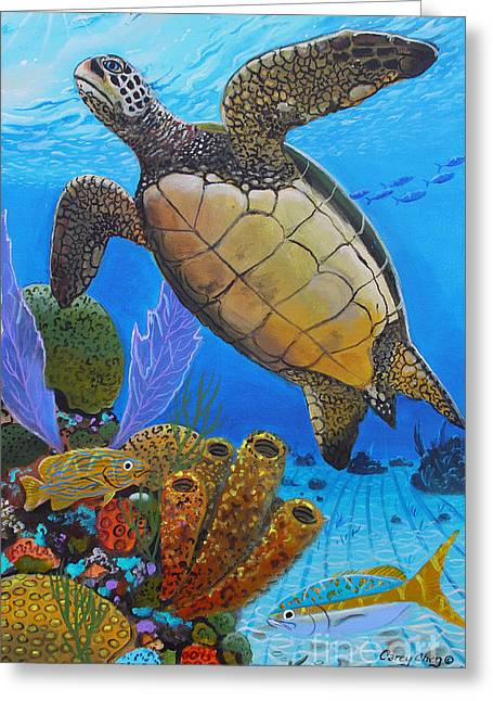 Green Turtle Greeting Cards - Tortuga Greeting Card by Carey Chen