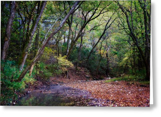 Boxley Valley Greeting Cards - Touch of Fall Greeting Card by Lana Trussell