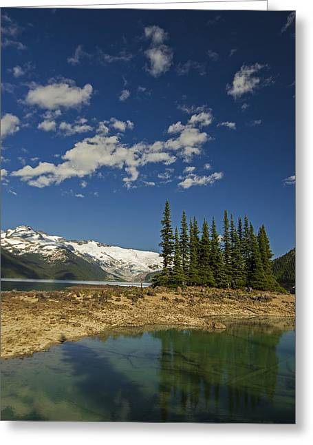 Fir Trees Photographs Greeting Cards - Touch the Sky Greeting Card by Aaron S Bedell