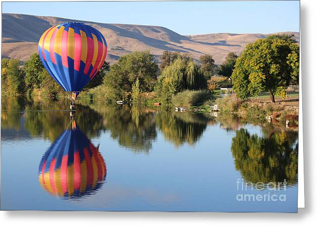 Yakima Valley Greeting Cards - Touchdown on the Yakima River Greeting Card by Carol Groenen