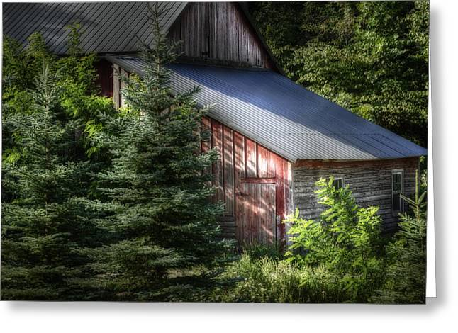 Old Barns Greeting Cards - Touched by the Sun Greeting Card by Joan Carroll