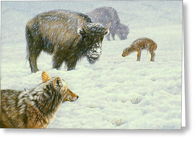 Buffalo Paintings Greeting Cards - Tough Day in May Greeting Card by Paul Krapf