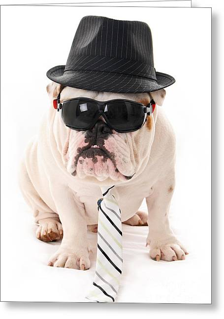 British Bulldog Greeting Cards - Tough Dog Greeting Card by Jt PhotoDesign