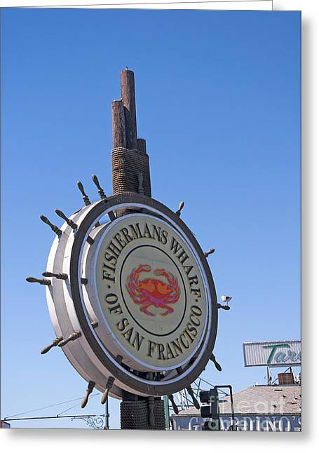 Sea Lions Greeting Cards - Touristic San Francisco Greeting Card by Brenda Kean
