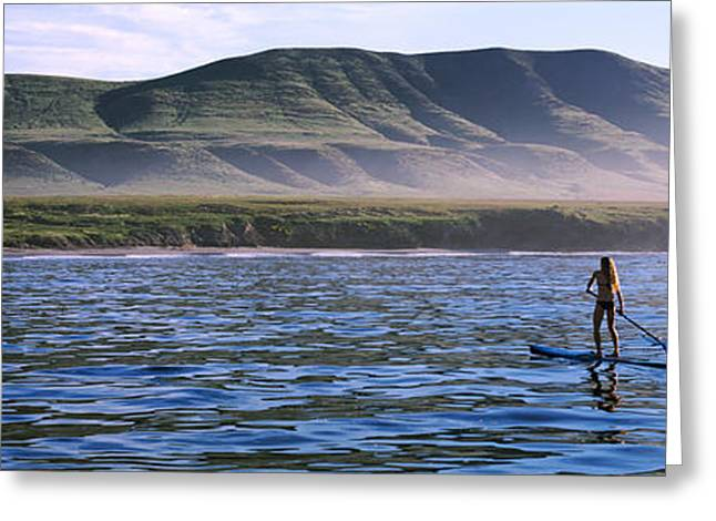 Santa Cruz Greeting Cards - Tourists Paddleboarding In The Pacific Greeting Card by Panoramic Images