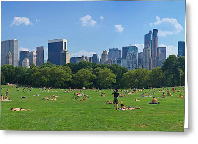 Tourists Resting In A Park, Sheep Greeting Card by Panoramic Images