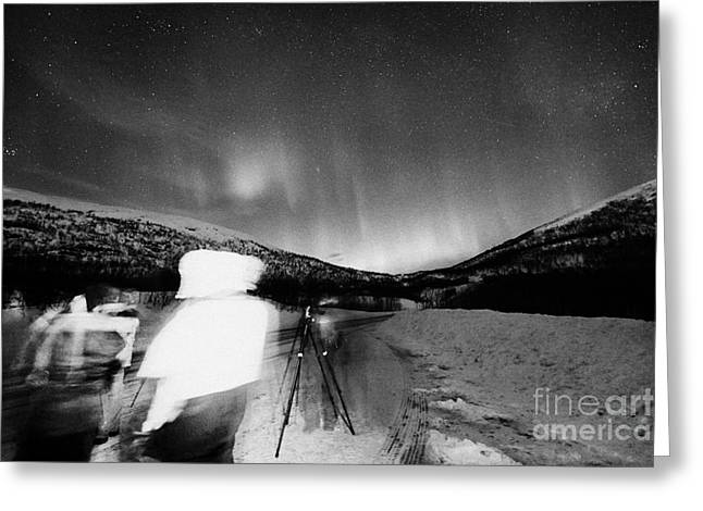 Photographing Aurora Greeting Cards - Tourists With Tripods And Cameras Et Up To Photograph Northern Lights Aurora Borealis Near Tromso In Greeting Card by Joe Fox