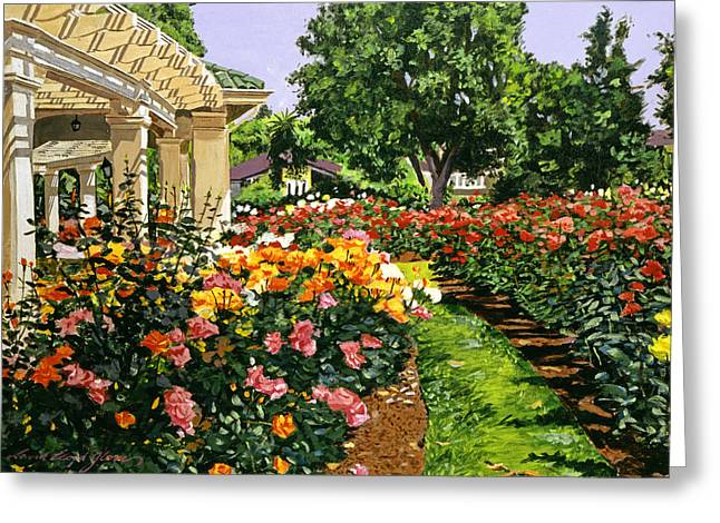 Best Selling Paintings Greeting Cards - Tournament of Roses II Greeting Card by David Lloyd Glover