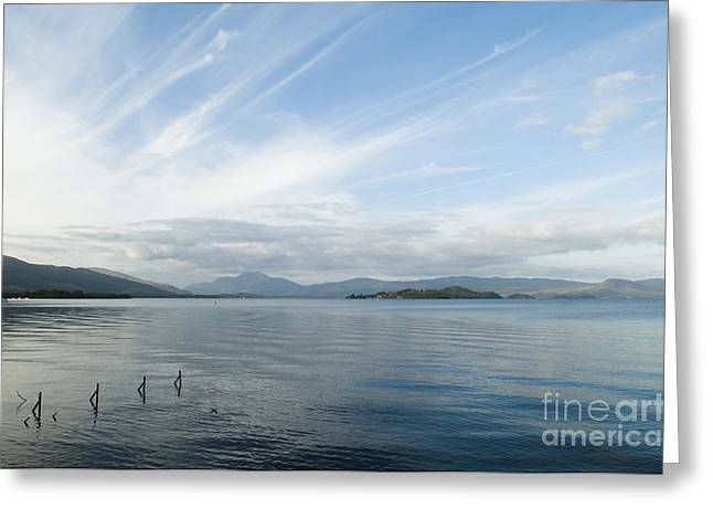 Dusky Greeting Cards - Towards Ben Lomond Greeting Card by Anne Gilbert