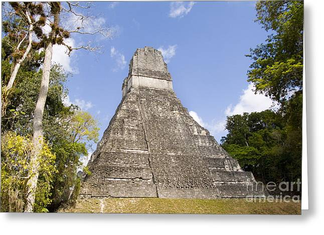Two Towers Greeting Cards - Tower Ii, Gran Plaza, Tikal, Guatemala Greeting Card by Bill Bachmann