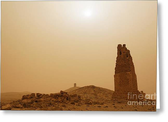 Levant Greeting Cards - Tower tombs Palmyra Syria in the light after a sandstorm Greeting Card by Robert Preston