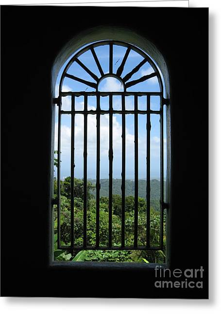 Yokahu Tower Greeting Cards - Tower Window Greeting Card by Christine Stack