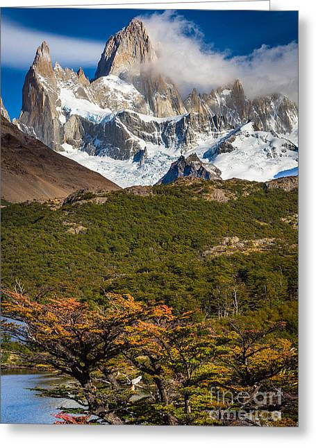 Andes Greeting Cards - Towering Fitz Roy Greeting Card by Inge Johnsson
