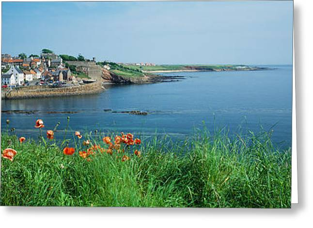 Fife Greeting Cards - Town At The Waterfront, Crail, Fife Greeting Card by Panoramic Images