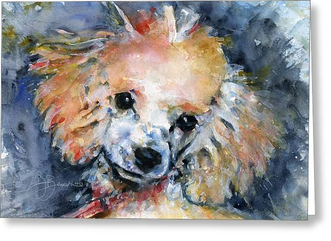 Toy Poodle Greeting Card by John D Benson