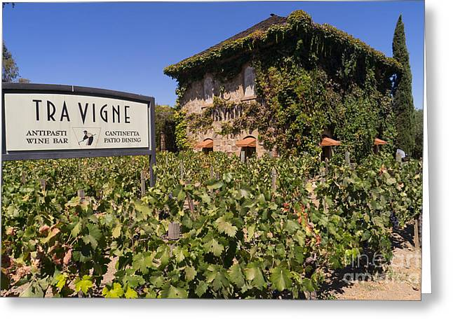 Napa Valley And Vineyards Greeting Cards - Tra Vigne Restaurant in St Helena Napa California DSC1685 Greeting Card by Wingsdomain Art and Photography