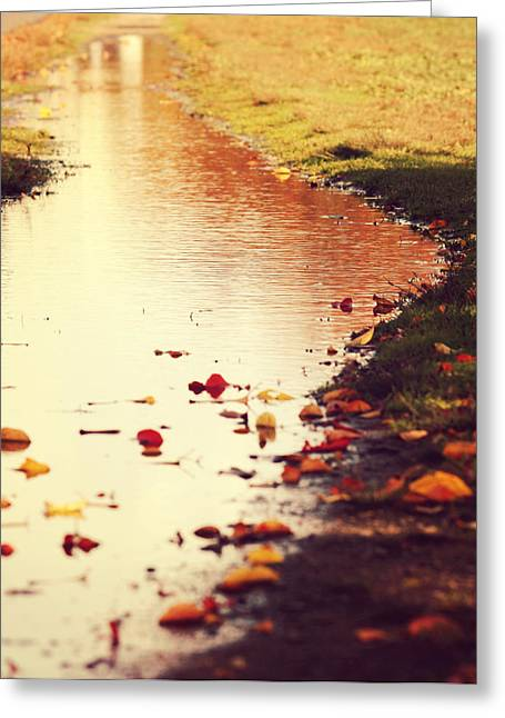 Mud Season Greeting Cards - Traces of Fall Greeting Card by Pedro Correa