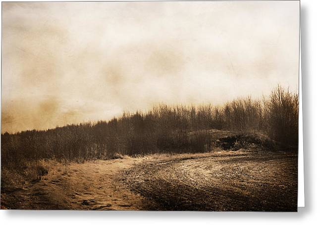 Traces Of Tracks  Greeting Card by JC Photography and Art